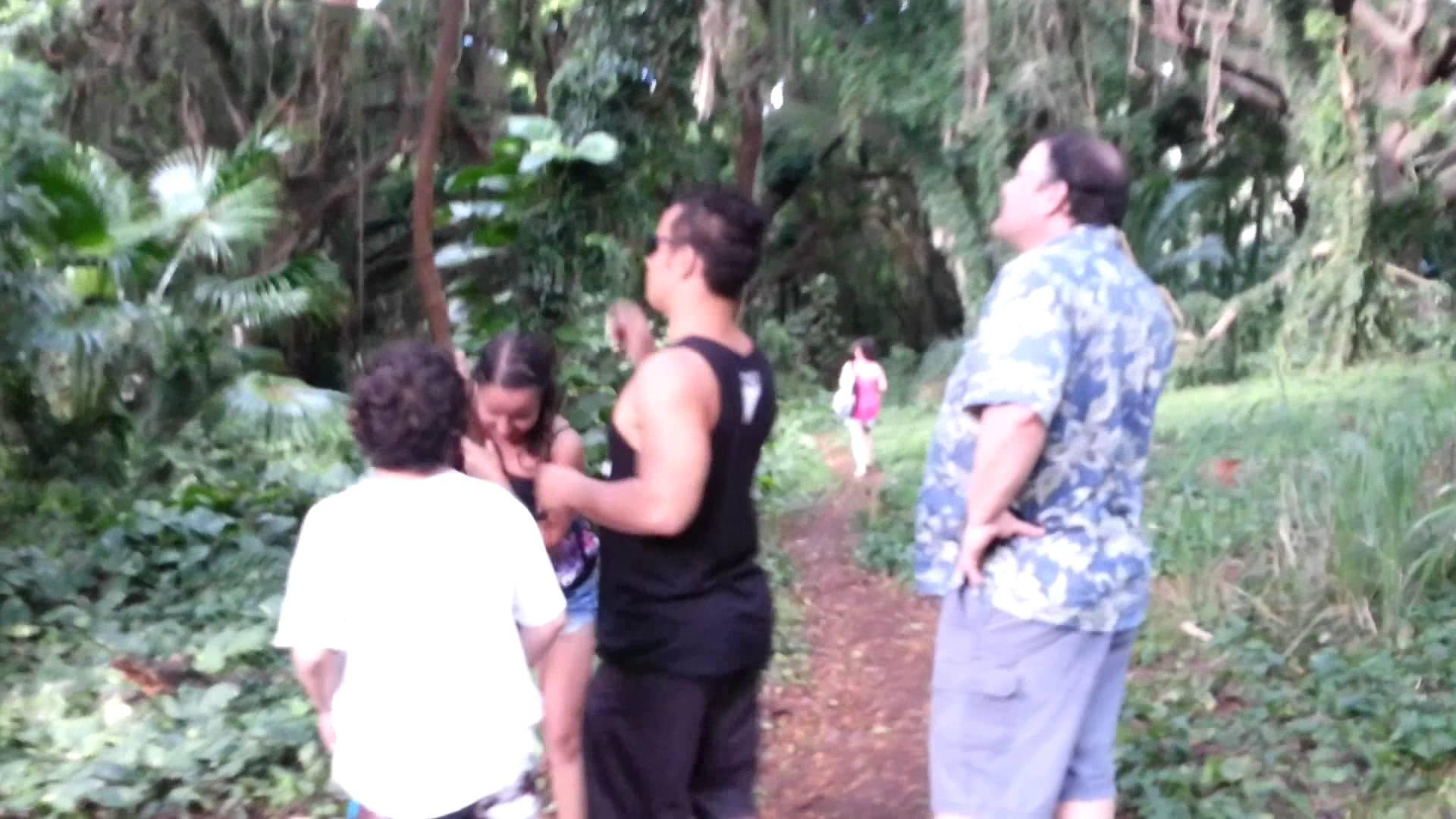 Lost in the Hawaiian Jungle *Galaxy S3 back camera*